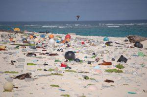 Beach strewn with plastic